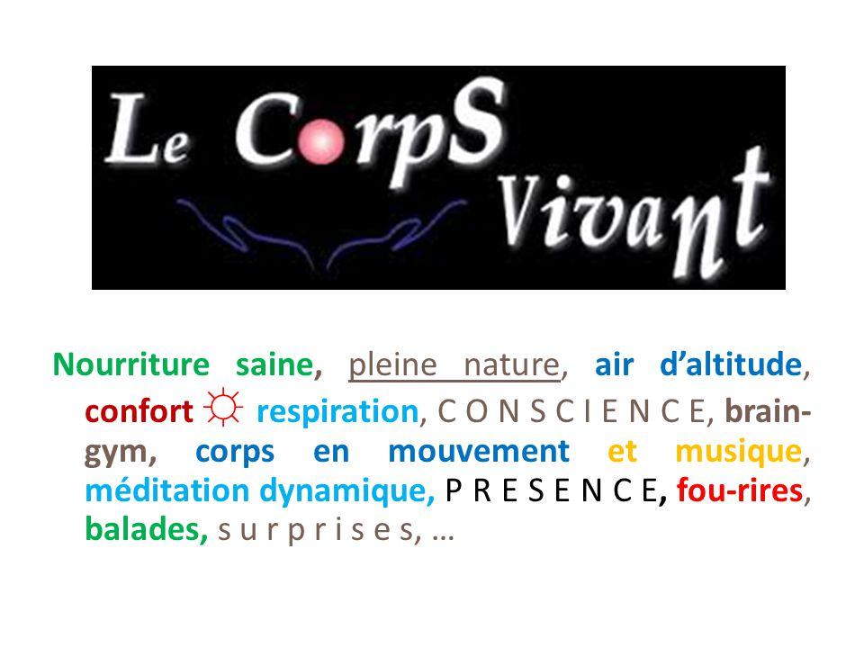 Nourriture saine, pleine nature, air d'altitude, confort ☼ respiration, C O N S C I E N C E, brain-gym, corps en mouvement et musique, méditation dynamique, P R E S E N C E, fou-rires, balades, s u r p r i s e s, …
