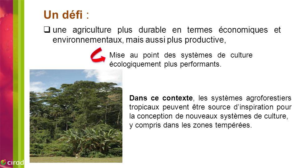 Un défi : une agriculture plus durable en termes économiques et environnementaux, mais aussi plus productive,