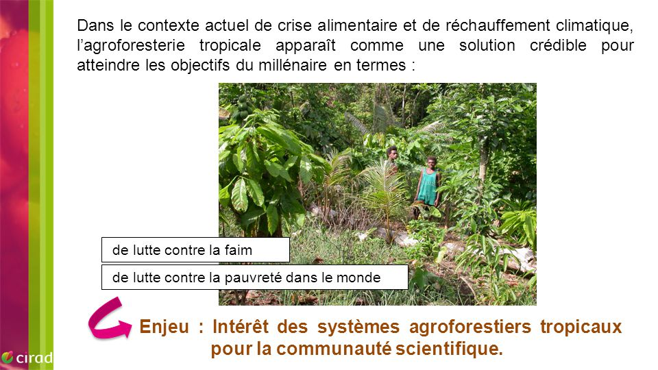 Dans le contexte actuel de crise alimentaire et de réchauffement climatique, l'agroforesterie tropicale apparaît comme une solution crédible pour atteindre les objectifs du millénaire en termes :