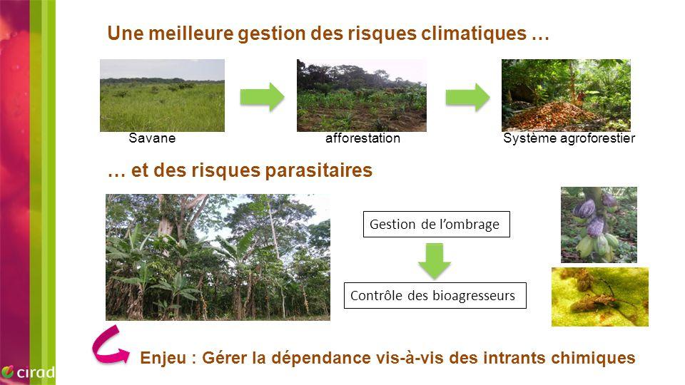 EXEMPLE D'IMAGE Une meilleure gestion des risques climatiques …