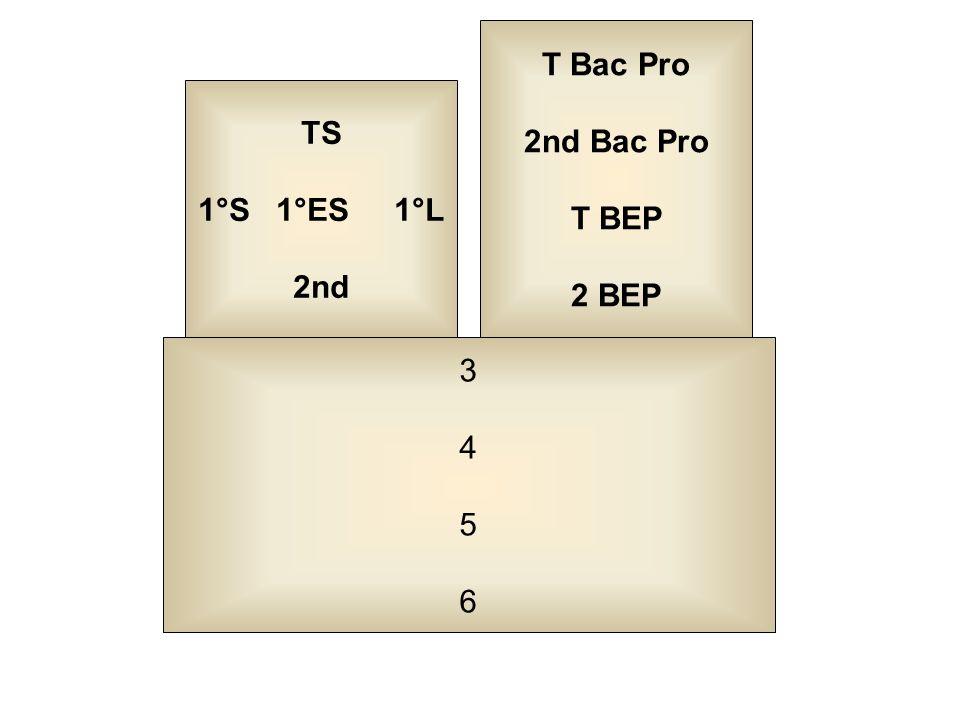 T Bac Pro 2nd Bac Pro T BEP 2 BEP TS 1°S 1°ES 1°L 2nd 3 4 5 6