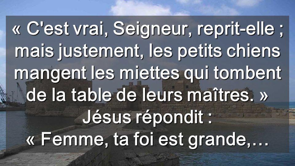 « C est vrai, Seigneur, reprit-elle ; mais justement, les petits chiens mangent les miettes qui tombent de la table de leurs maîtres.