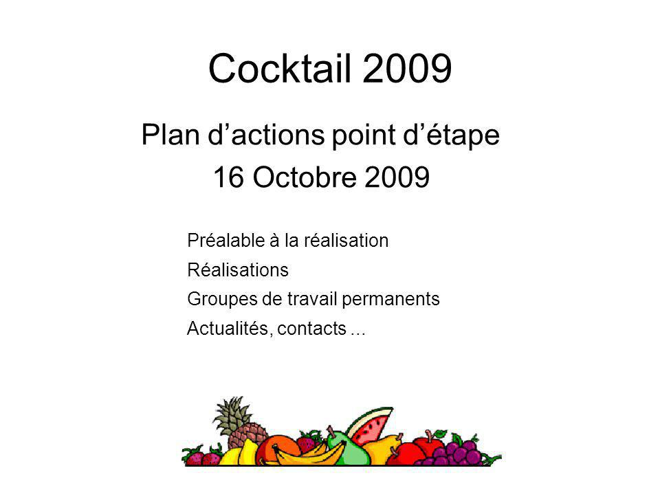 Plan d'actions point d'étape 16 Octobre 2009