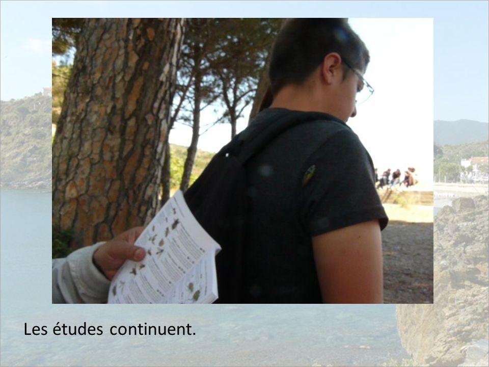 Les études continuent.