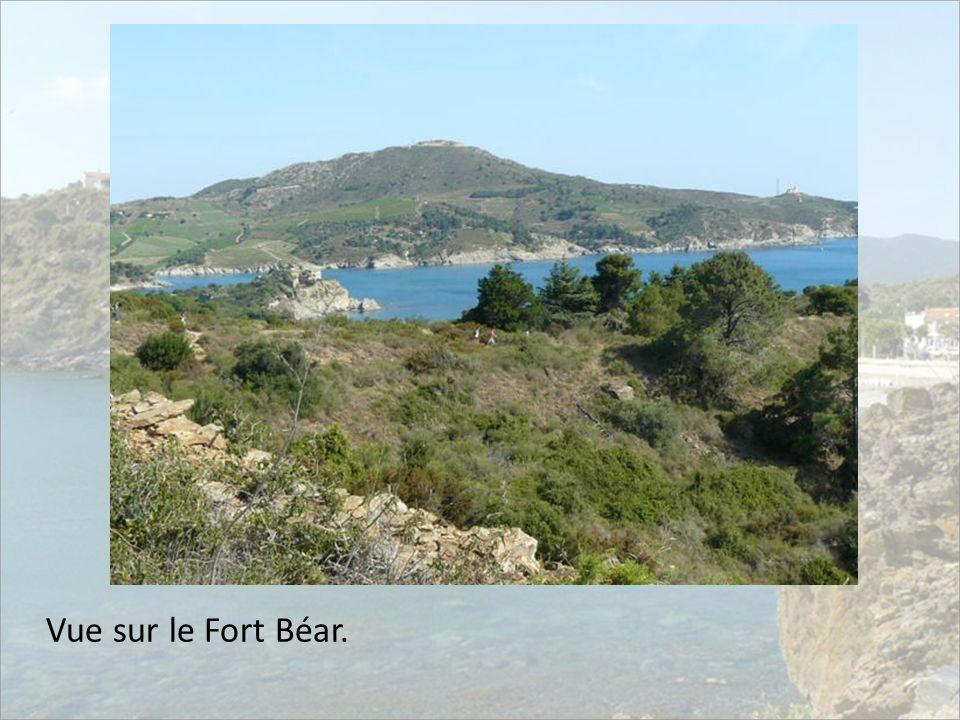 Vue sur le Fort Béar.