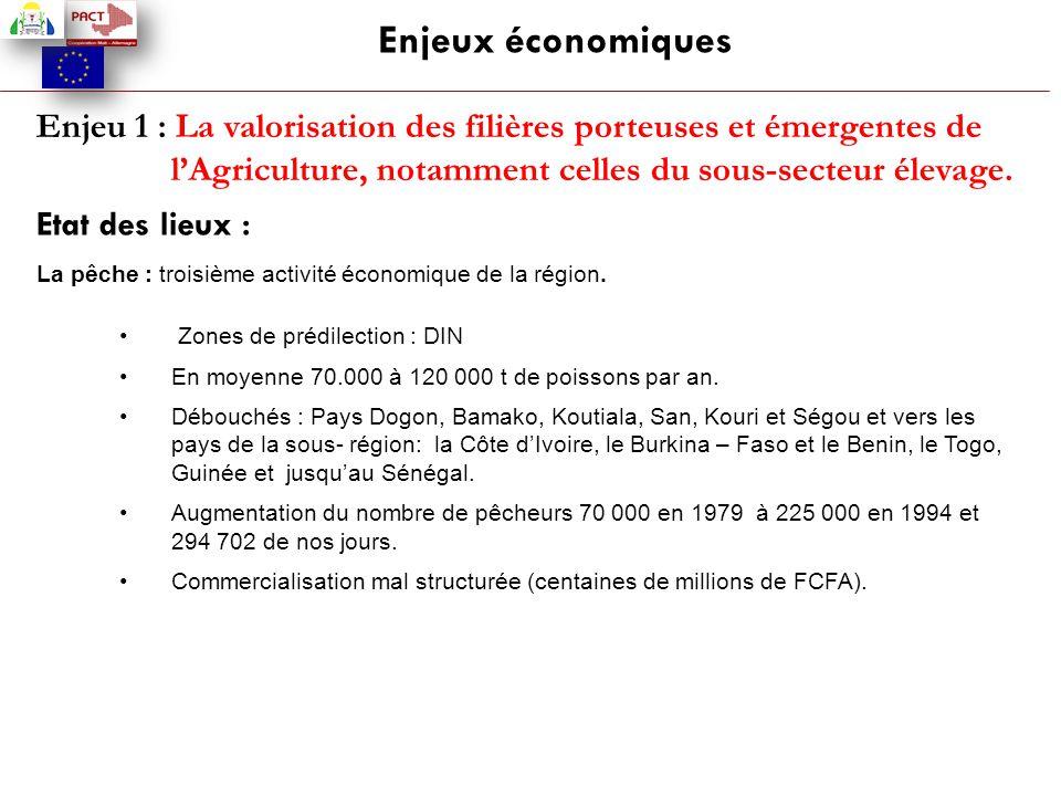 Enjeux économiques Enjeu 1 : La valorisation des filières porteuses et émergentes de l'Agriculture, notamment celles du sous-secteur élevage.