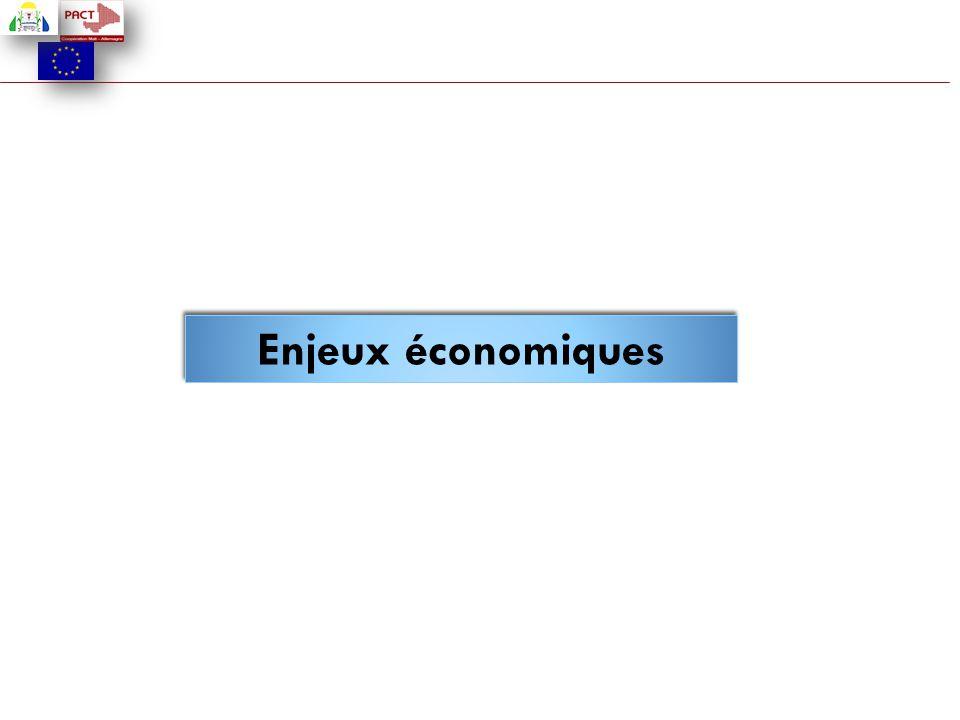 Enjeux économiques