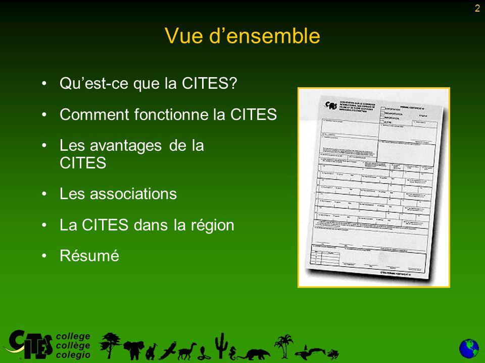 Vue d'ensemble Qu'est-ce que la CITES Comment fonctionne la CITES