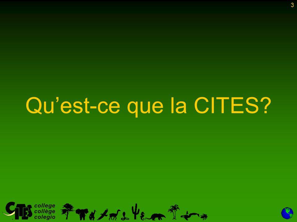 Qu'est-ce que la CITES