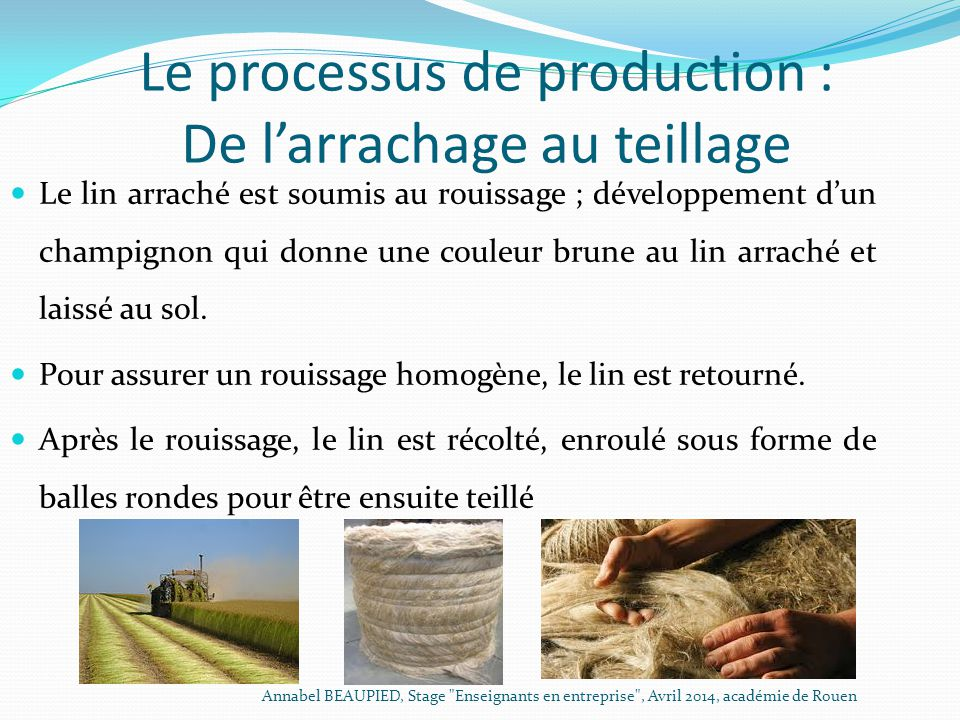 Le processus de production : De l'arrachage au teillage