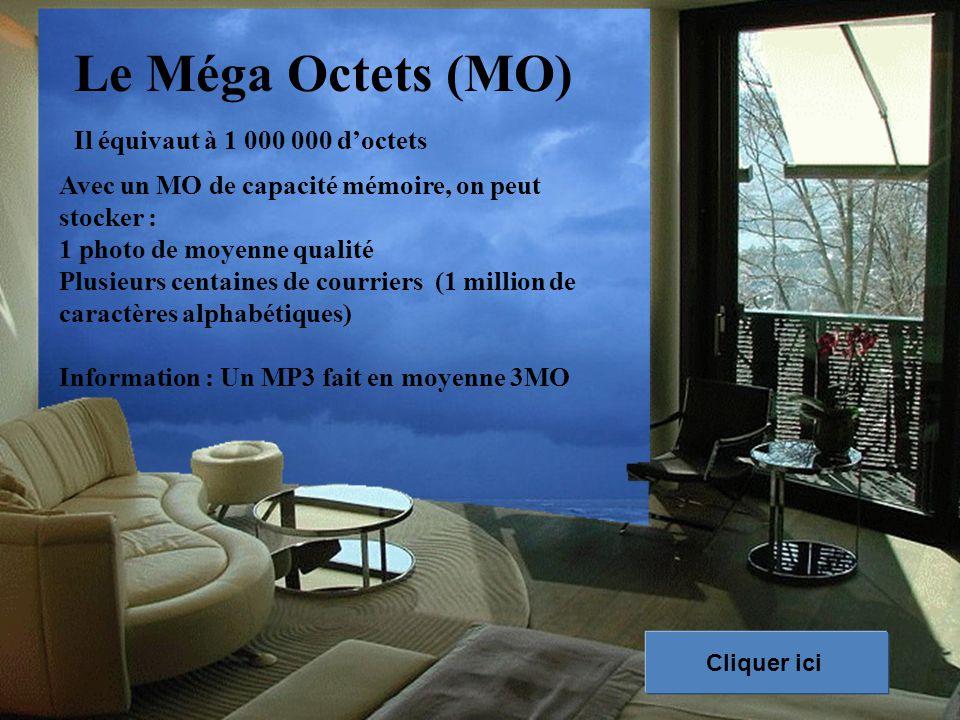 Le Méga Octets (MO) Il équivaut à 1 000 000 d'octets
