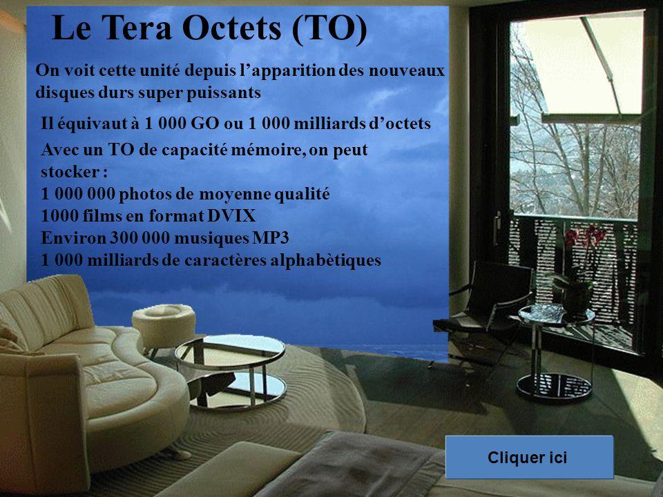 Le Tera Octets (TO) On voit cette unité depuis l'apparition des nouveaux disques durs super puissants.