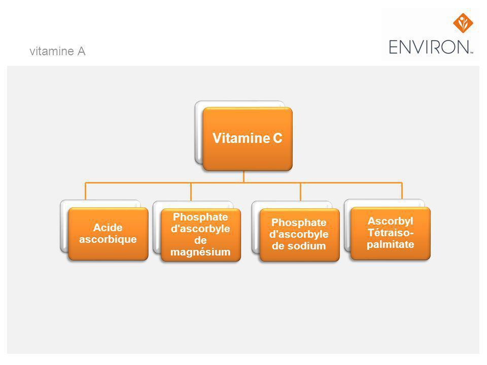 Vitamine C vitamine A Phosphate d ascorbyle de magnésium