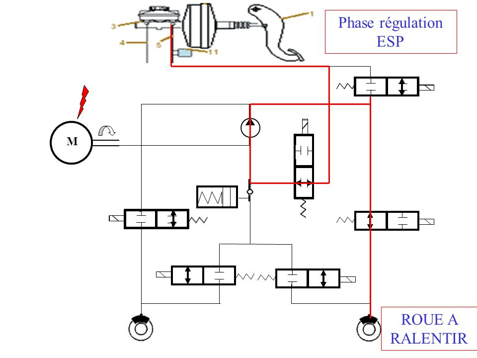 Phase régulation ESP M ROUE A RALENTIR