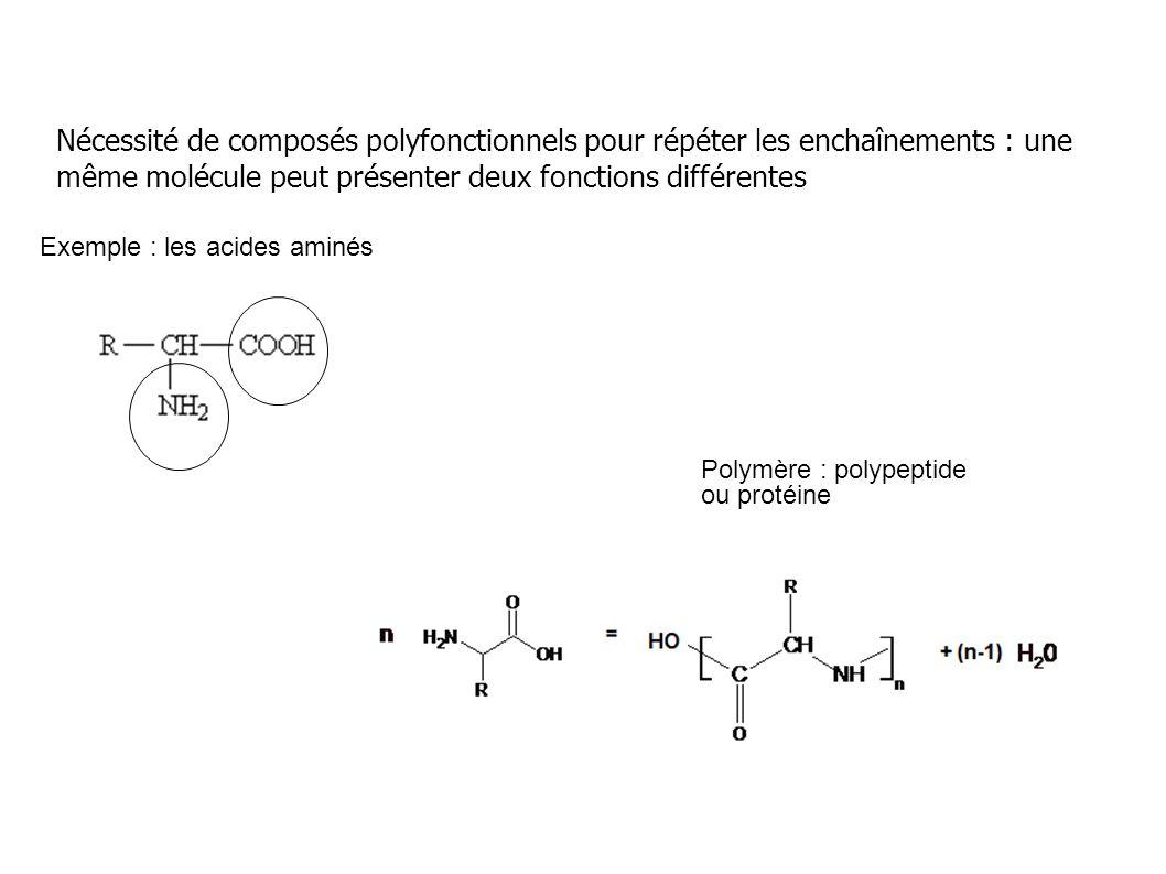 Nécessité de composés polyfonctionnels pour répéter les enchaînements : une même molécule peut présenter deux fonctions différentes