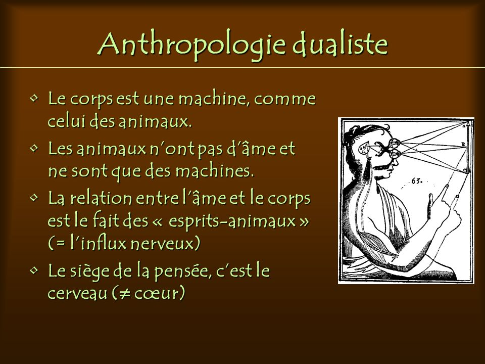 Anthropologie dualiste