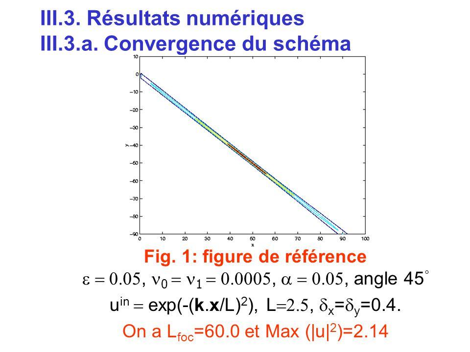 III.3. Résultats numériques III.3.a. Convergence du schéma
