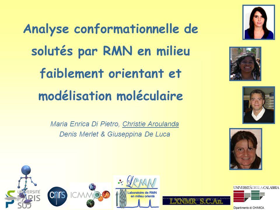 Analyse conformationnelle de solutés par RMN en milieu faiblement orientant et modélisation moléculaire