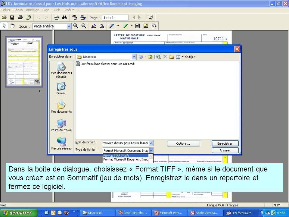 Dans la boite de dialogue, choisissez « Format TIFF », même si le document que vous créez est en Sommatif (jeu de mots).