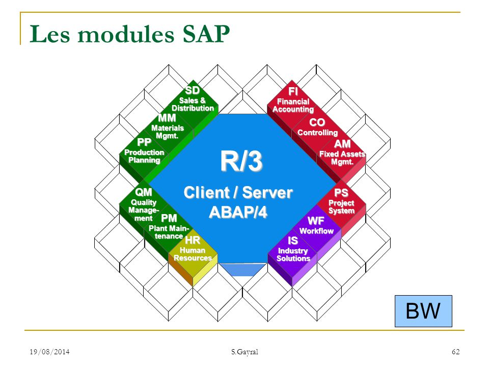 R/3 Les modules SAP BW Client / Server ABAP/4 SD FI MM CO PP AM QM PS