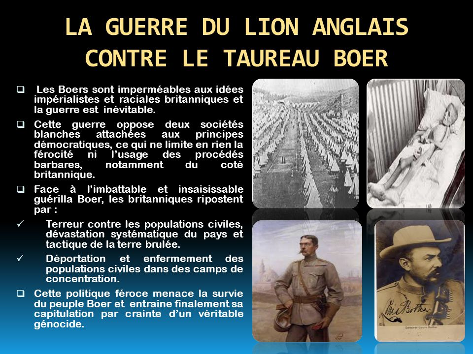 LA GUERRE DU LION ANGLAIS CONTRE LE TAUREAU BOER
