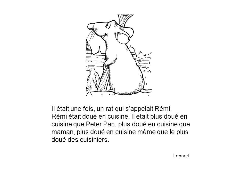 Il était une fois, un rat qui s'appelait Rémi.