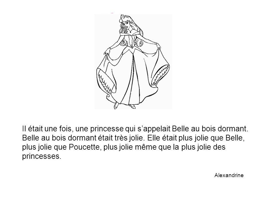 Il était une fois, une princesse qui s'appelait Belle au bois dormant.