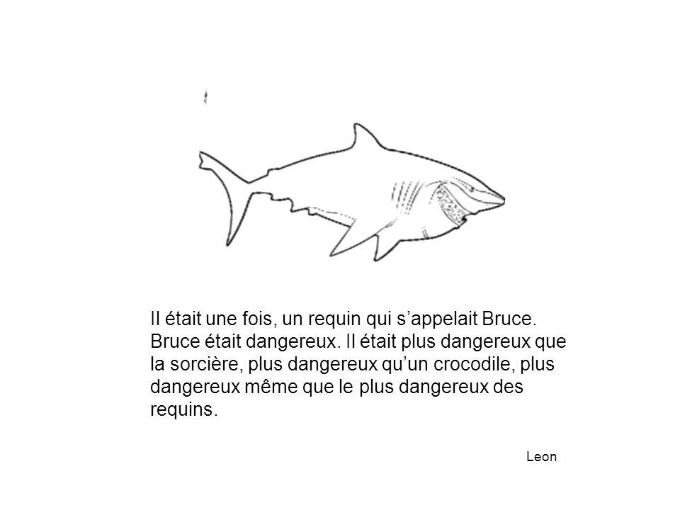 Il était une fois, un requin qui s'appelait Bruce.