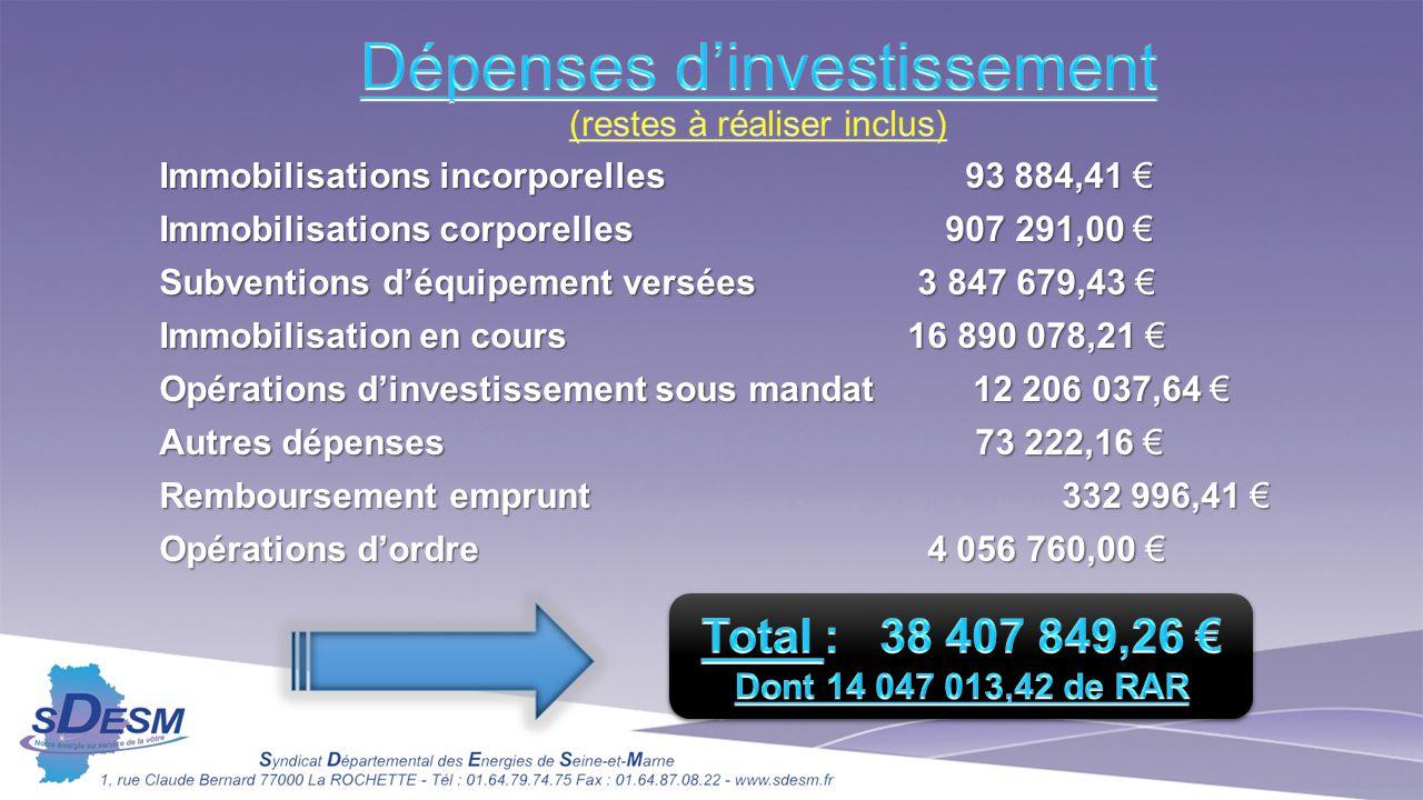 Dépenses d'investissement (restes à réaliser inclus)