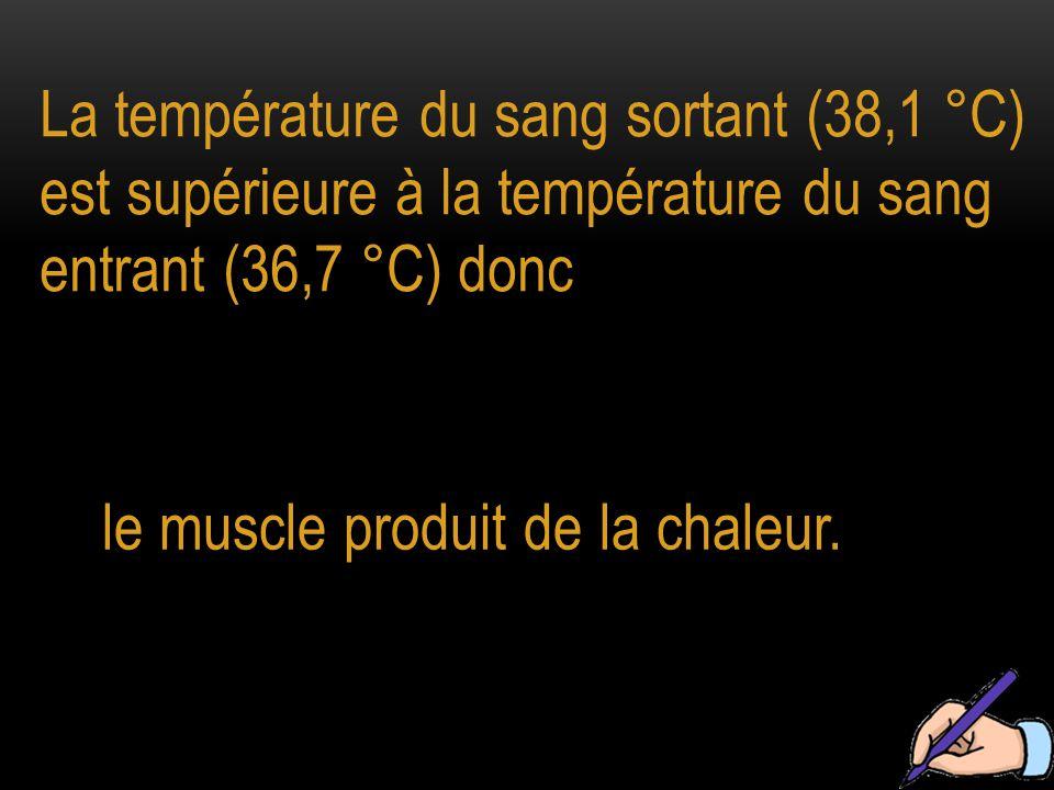 La température du sang sortant (38,1 °C) est supérieure à la température du sang entrant (36,7 °C) donc