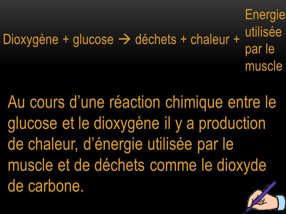 Dioxygène + glucose  déchets + chaleur +