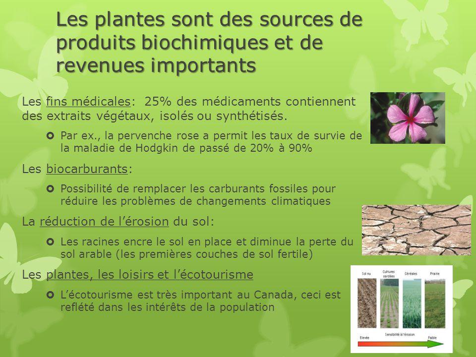 Les plantes sont des sources de produits biochimiques et de revenues importants