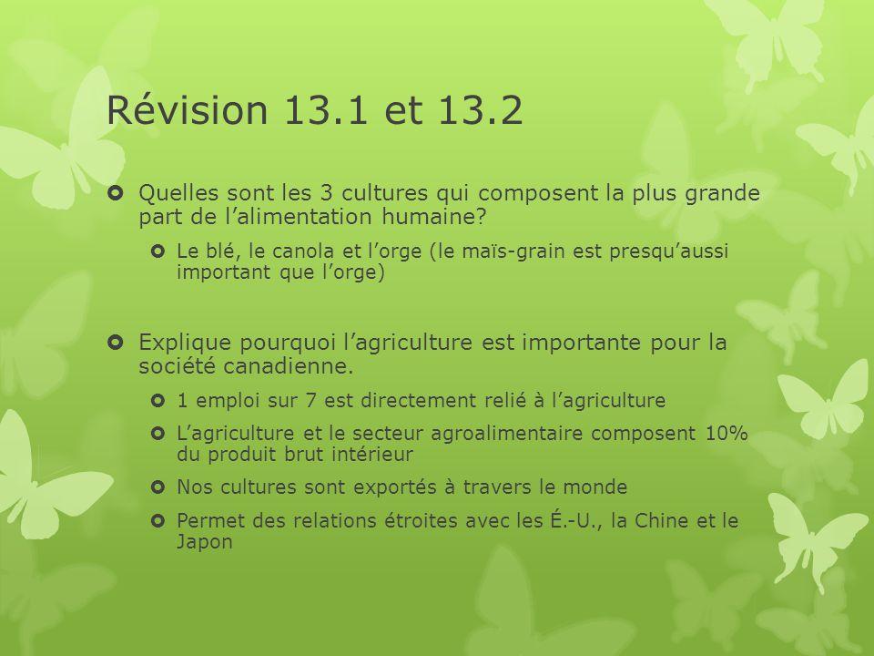Révision 13.1 et 13.2 Quelles sont les 3 cultures qui composent la plus grande part de l'alimentation humaine