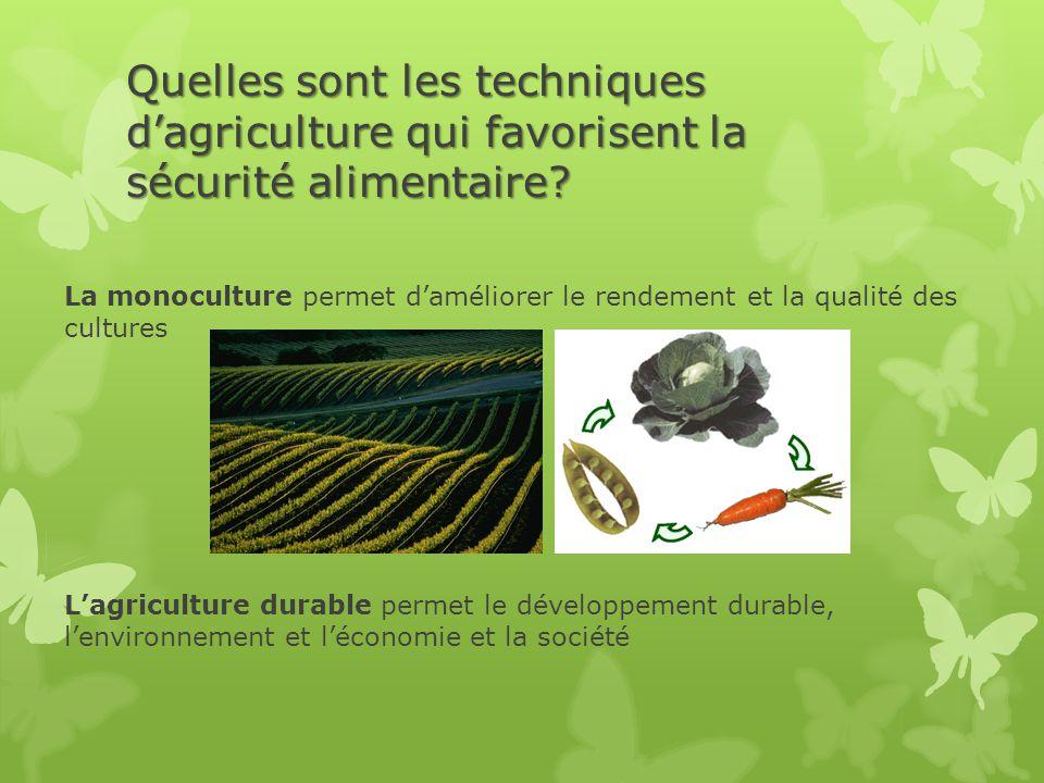 Quelles sont les techniques d'agriculture qui favorisent la sécurité alimentaire