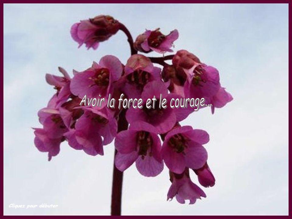 Avoir la force et le courage...