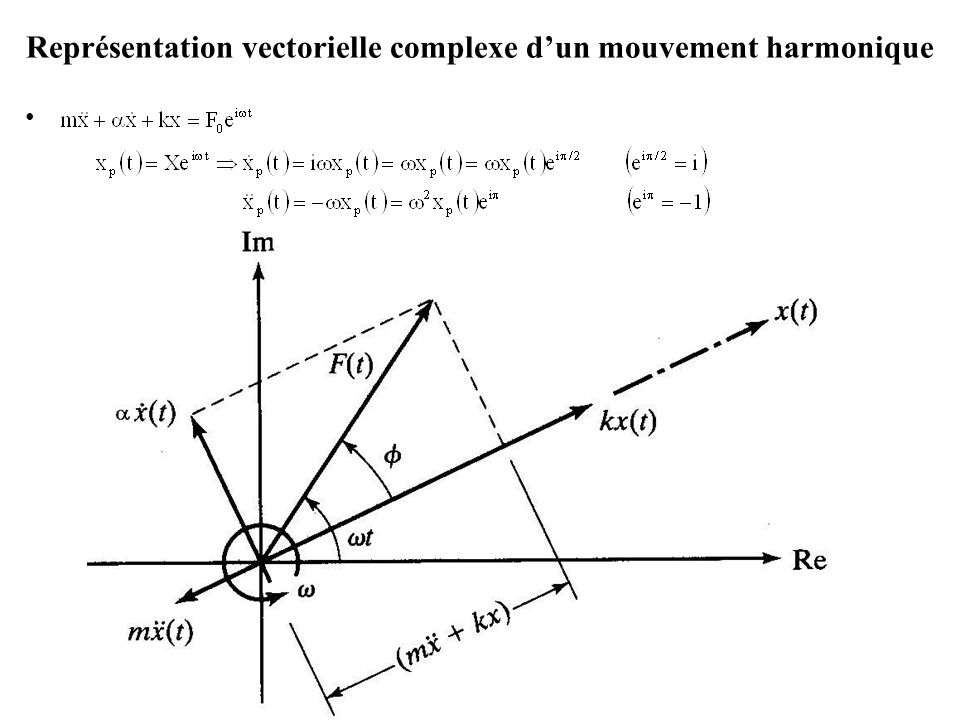 Représentation vectorielle complexe d'un mouvement harmonique