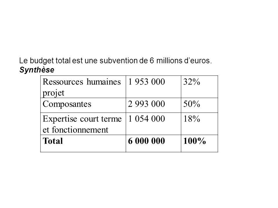 Ressources humaines projet 1 953 000 32% Composantes 2 993 000 50%