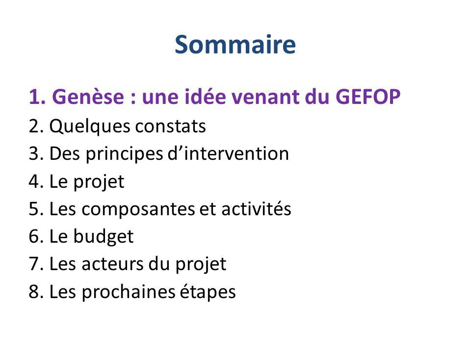 Sommaire 1. Genèse : une idée venant du GEFOP 2. Quelques constats