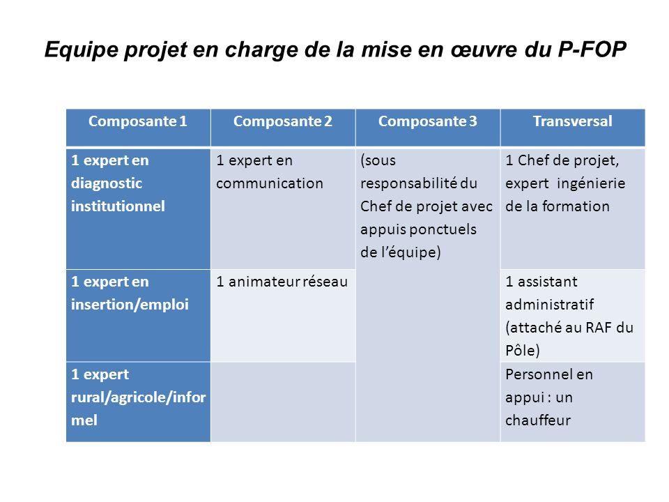 Equipe projet en charge de la mise en œuvre du P-FOP