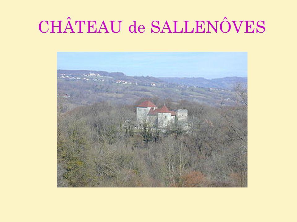CHÂTEAU de SALLENÔVES