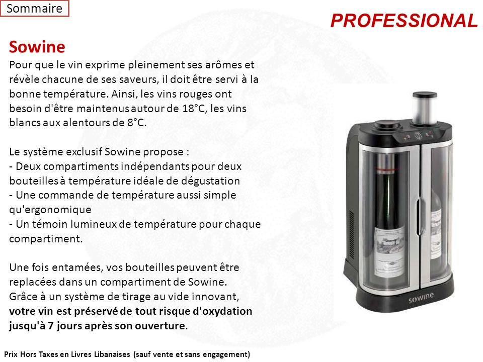 PROFESSIONAL Sowine Sommaire