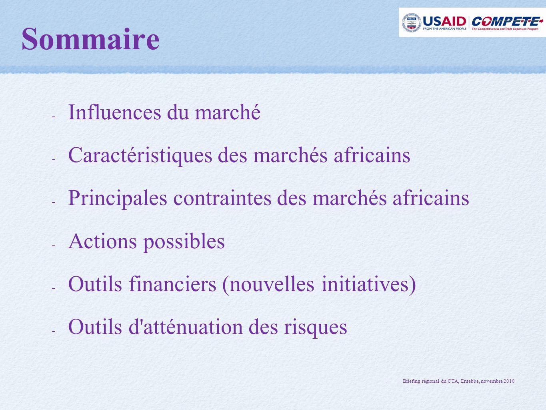 Sommaire Influences du marché Caractéristiques des marchés africains