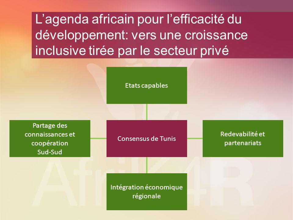 L'agenda africain pour l'efficacité du développement: vers une croissance inclusive tirée par le secteur privé