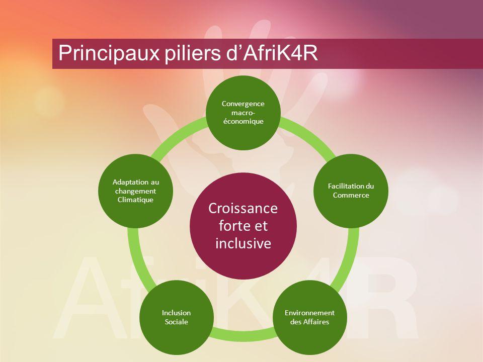 Principaux piliers d'AfriK4R