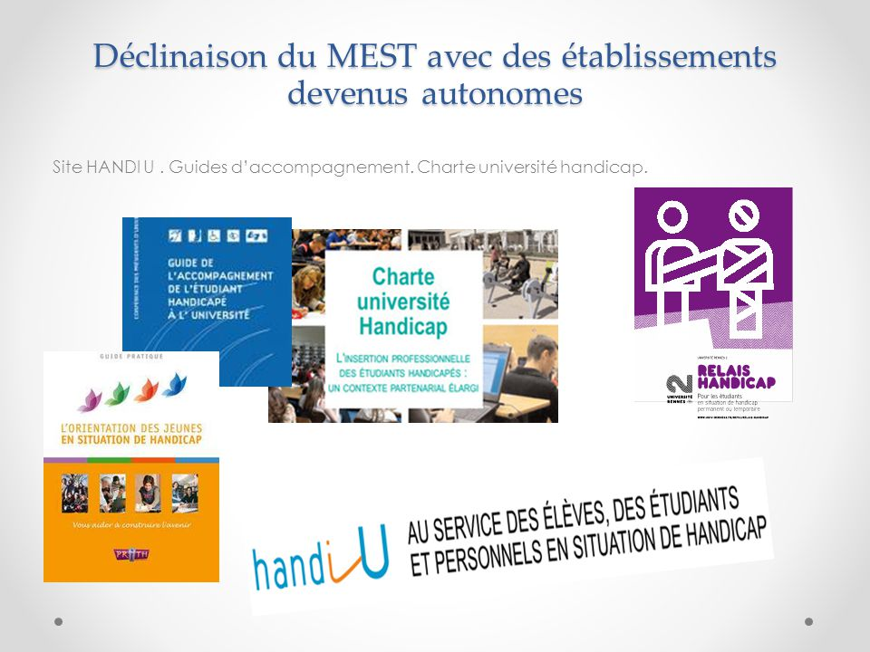 Déclinaison du MEST avec des établissements devenus autonomes