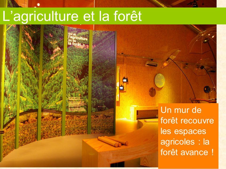 L'agriculture et la forêt