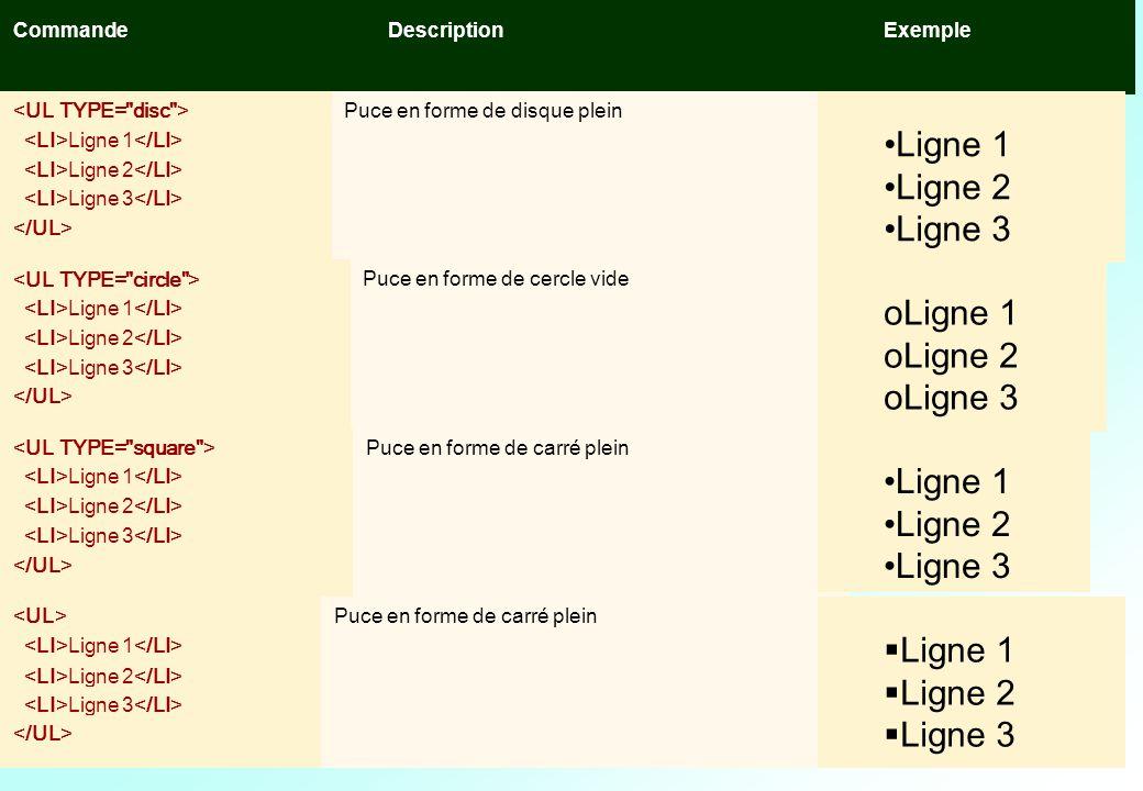 Le texte Ligne 1 Ligne 2 Ligne 3 Le texte Les listes Ligne 1 Ligne 2