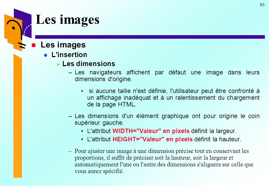 Les images Les images L insertion Les dimensions