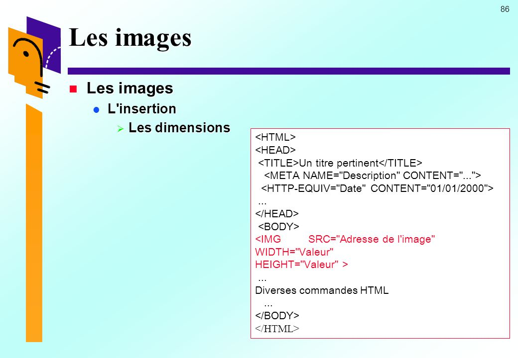 Les images Les images L insertion Les dimensions <HTML>