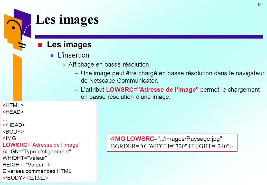 Les images Les images L insertion Affichage en basse résolution